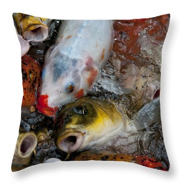 Hey Whats Happening Throw Pillow by Wilma  Birdwell