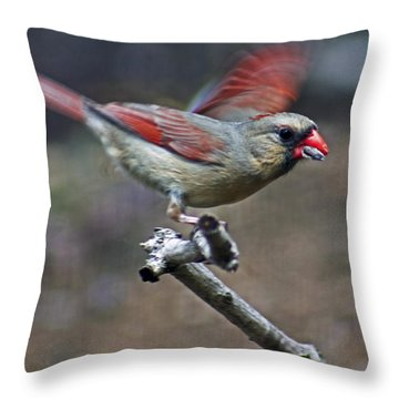 Hi And Bye Throw Pillow