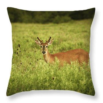 Hi Throw Pillow