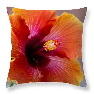 Hibiscus 3 Throw Pillow by Sally Simon