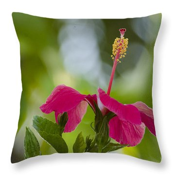 Hibiscus Blooming Throw Pillow