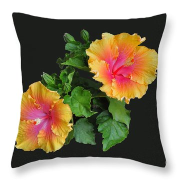 Throw Pillow featuring the photograph Hibiscus Duo by Susan Wiedmann