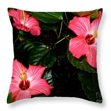 Throw Pillow featuring the photograph Hibiscus Flowers by Oksana Semenchenko