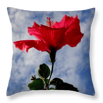 Hibiscus In The Sky Throw Pillow