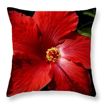 Hibiscus Landscape Throw Pillow