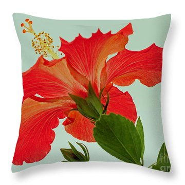 Christmas Hibiscus Throw Pillow by Larry Nieland