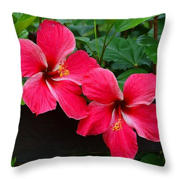 Throw Pillow featuring the photograph Hibiscus Portrait by Blair Wainman