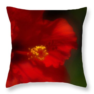 Throw Pillow featuring the photograph Hibiscus Softly 2 by Travis Burgess