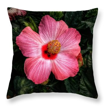 Hibiscus Sunset Throw Pillow