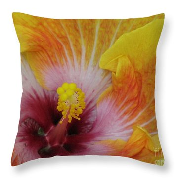 Throw Pillow featuring the photograph Hibiscus by Tam Ryan