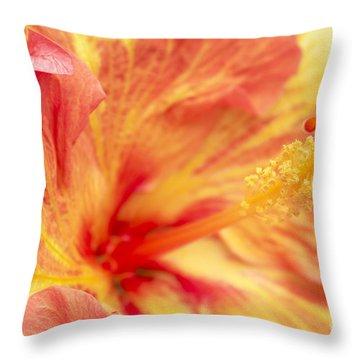 Hibiscus Throw Pillow by Tony Cordoza