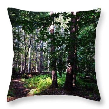 Nature Place Throw Pillow