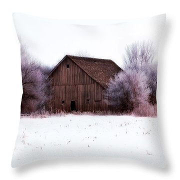 Hidden Barn Throw Pillow by Julie Hamilton