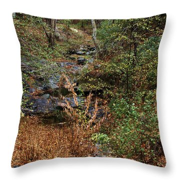 Hidden Creek In Silverado Canyon Throw Pillow