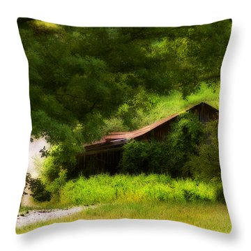 Hidden Down The Road Throw Pillow