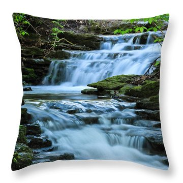 Hidden Falls Throw Pillow by Julie Andel