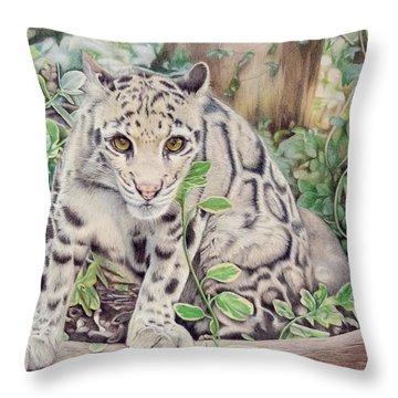 Hidden In Plain Sight - Clouded Leopard Throw Pillow