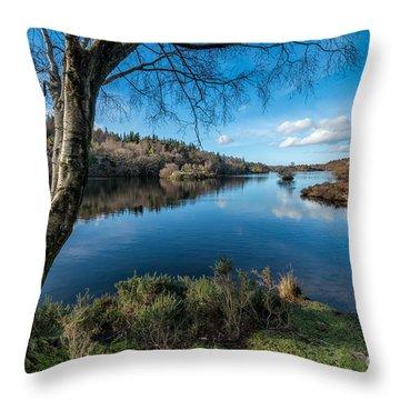 Hidden Lake Throw Pillow by Adrian Evans