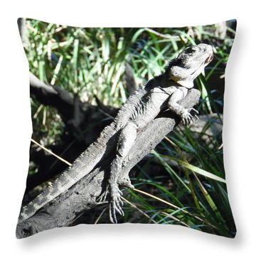 Hidden Reptile Throw Pillow