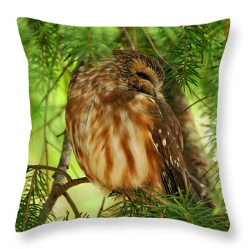 Throw Pillow featuring the photograph Hidden  by Sabine Edrissi