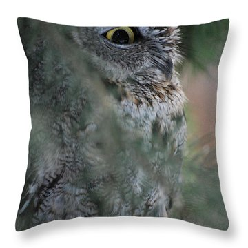 Throw Pillow featuring the photograph Hidden by Sharon Elliott