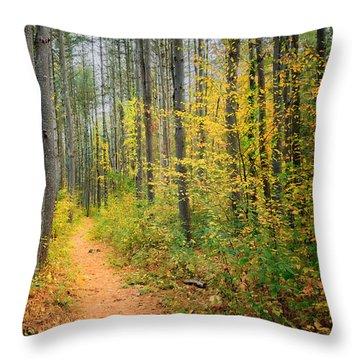 Hidden Valley Throw Pillow by Bill Wakeley