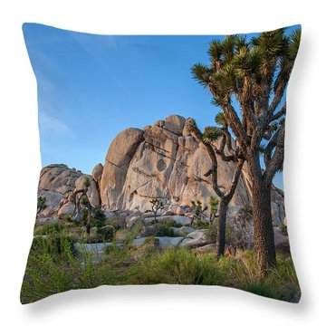 Joshua Tree Np Throw Pillows
