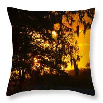 Hidden Valley Ranch Throw Pillow by Deprise Brescia
