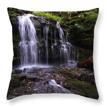 Hidden Waterfalls Of Wayne County I Throw Pillow