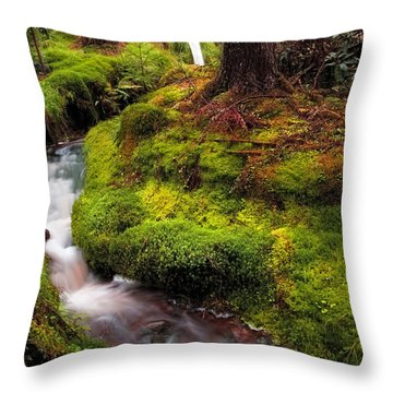 Hidden Woodland Corner. Benmore Botanical Garden. Scotland Throw Pillow by Jenny Rainbow