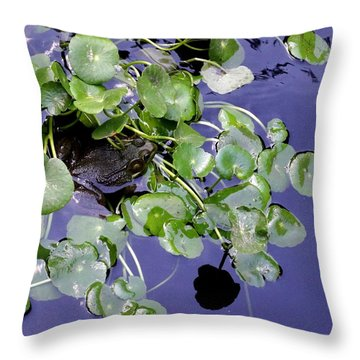 Hide And Seek Throw Pillow by Deborah  Crew-Johnson
