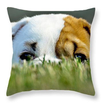 Hide And Seek Novice Throw Pillow