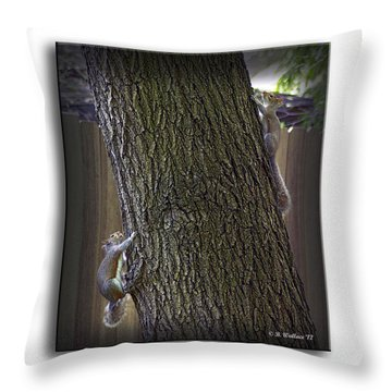 Hide And Seek Squirrels Throw Pillow by Brian Wallace