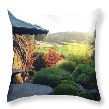 Throw Pillow featuring the photograph Hide Out 2 by Shawn Marlow