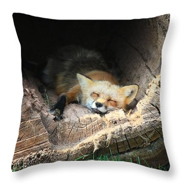 Hideout Throw Pillow by Veronica Batterson