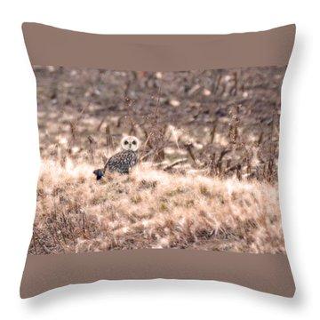 Hiding In Plain Sight Throw Pillow