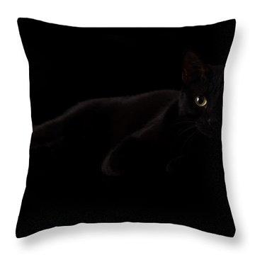 Hiding In Shadows Throw Pillow