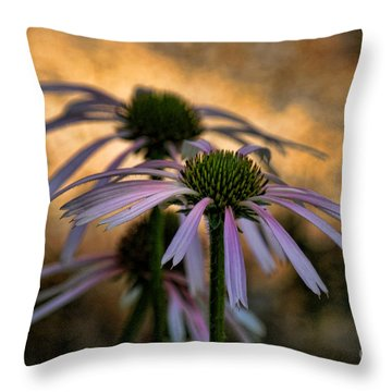 Throw Pillow featuring the photograph Hiding In The Shadows by Peggy Hughes