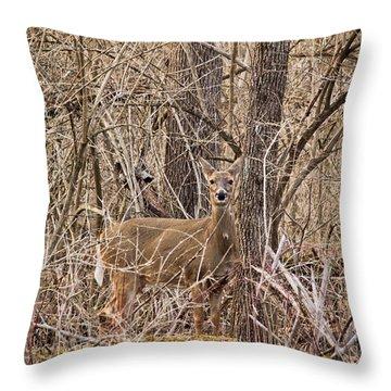 Hiding Out Throw Pillow