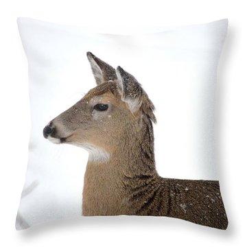 Throw Pillow featuring the photograph High Alert by Dacia Doroff