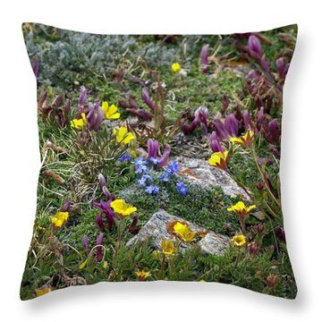Throw Pillow featuring the photograph High Anxiety by Jeremy Rhoades