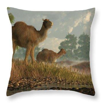 High Arctic Camel Throw Pillow by Daniel Eskridge