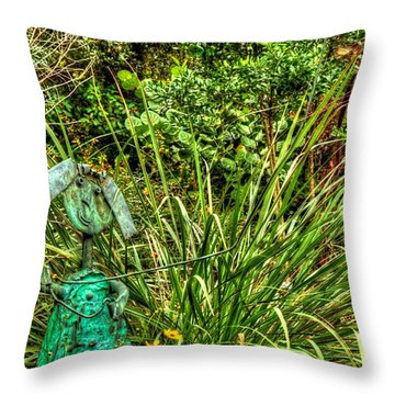 Throw Pillow featuring the photograph High Flyer by Tyson Kinnison