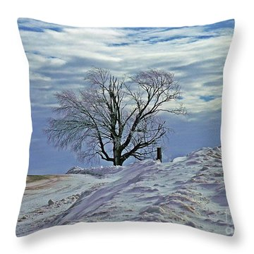 Throw Pillow featuring the photograph High On A Hill by Christian Mattison