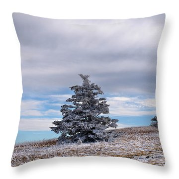High On The Mountain Throw Pillow