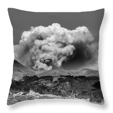 High Park Fire Throw Pillow