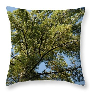 High Pine Throw Pillow by Joseph Yarbrough