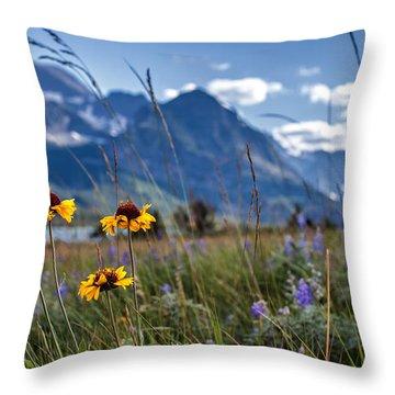High Plains Throw Pillow