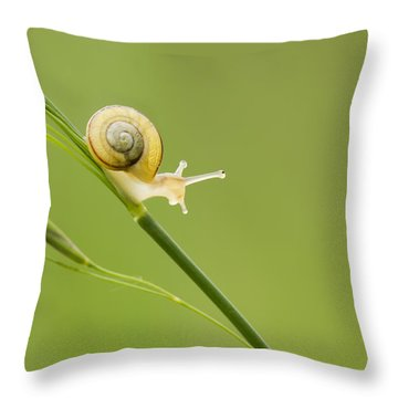 High Speed Snail Throw Pillow