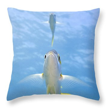Higher Power Throw Pillow